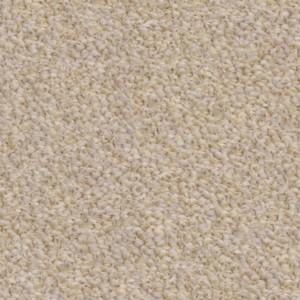 carpeting-texture (21)
