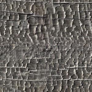 coal-texture (17)