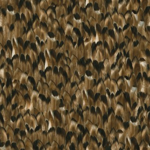 feather-texture (54)