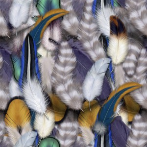 feather-texture (56)