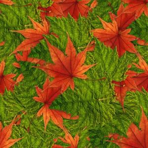foliage-texture (111)