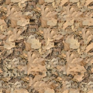 foliage-texture (113)