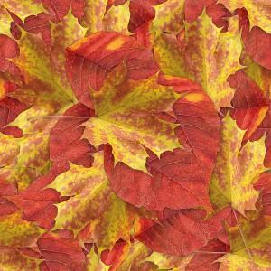 foliage-texture (29)