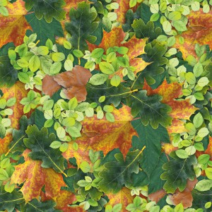 foliage-texture (30)