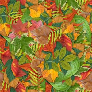 foliage-texture (51)