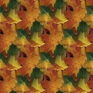 foliage-texture (74)