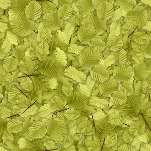 foliage-texture (75)