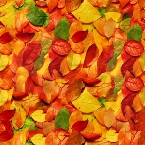 foliage-texture (90)
