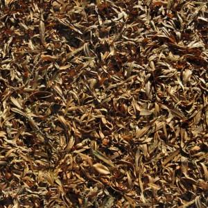 foliage-texture (95)