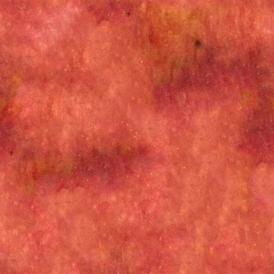 fruitpeel-texture (16)