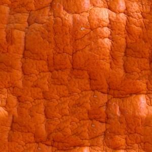fruitpeel-texture (40)