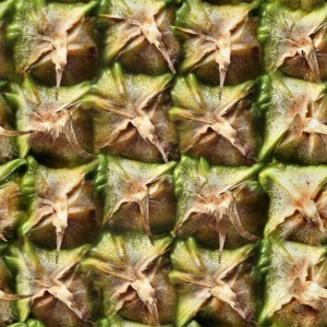 fruitpeel-texture (43)