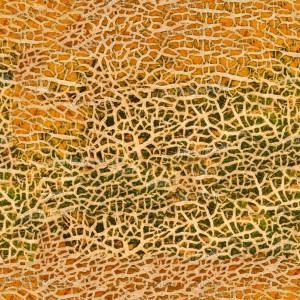 fruitpeel-texture (44)