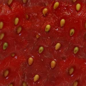 fruitpeel-texture (57)