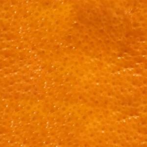fruitpeel-texture (67)