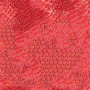 fruitpeel-texture (75)