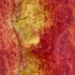fruitpeel-texture (76)