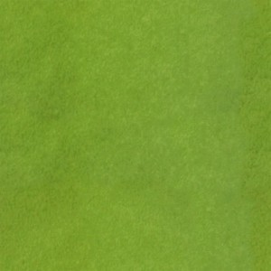 fruitpeel-texture (80)