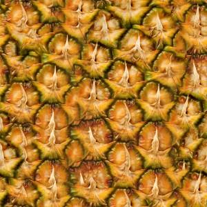 fruitpeel-texture (88)