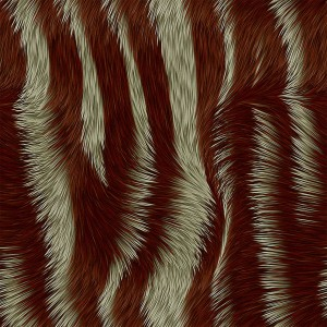 fur-texture (25)
