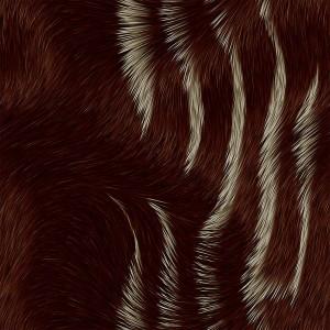 fur-texture (28)