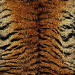 fur-texture (31)