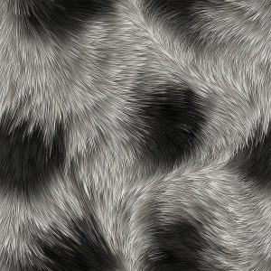 fur-texture (45)