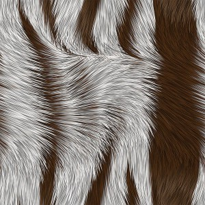 fur-texture (6)