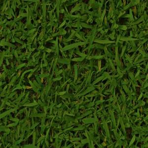 grass-texture (2)