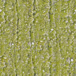 grass-texture (30)