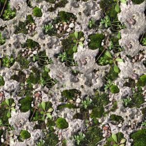 grass-texture (32)