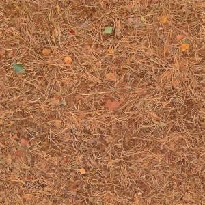 grass-texture (40)