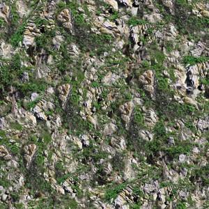 grass-texture (65)