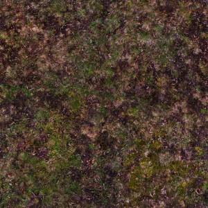 grass-texture (76)
