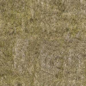 grass-texture (79)