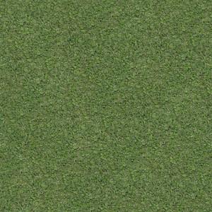 grass-texture (87)
