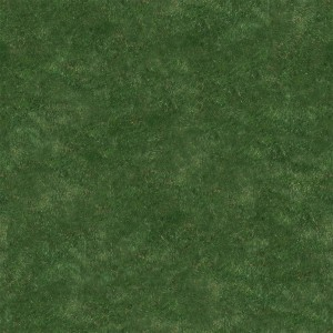 grass-texture (88)