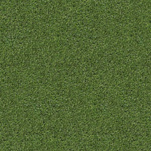 grass-texture (89)