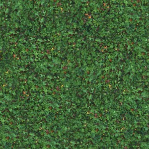 grass-texture (91)