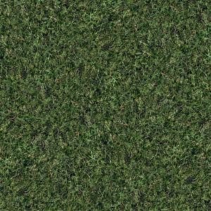 grass-texture (92)