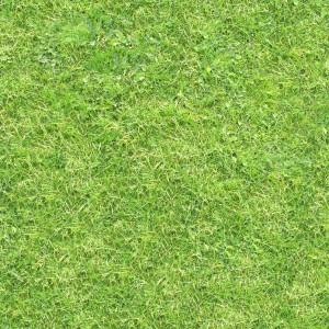 grass-texture (98)