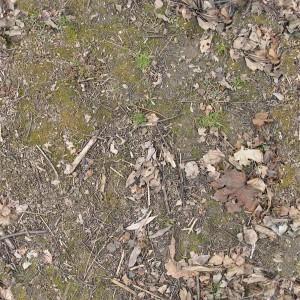 ground-texture (1)