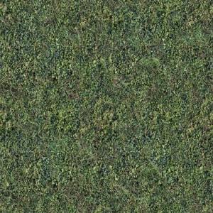 ground-texture (106)