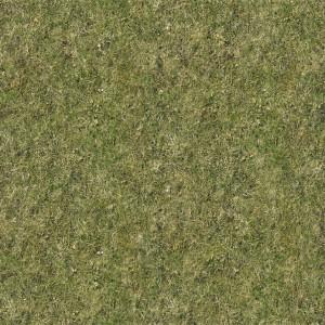 ground-texture (108)