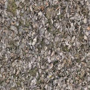 ground-texture (119)