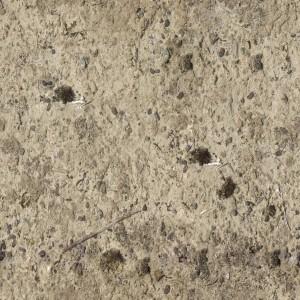 ground-texture (121)
