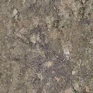 ground-texture (3)