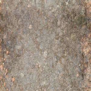 ground-texture (32)