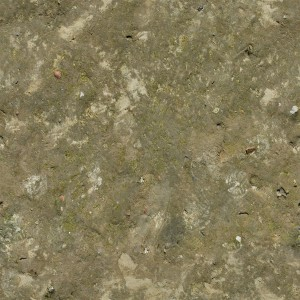 ground-texture (71)