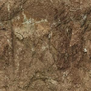 ground-texture (77)
